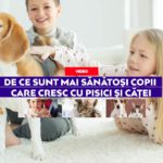 De ce sunt mai sănătoși copii care cresc cu pisici și căței